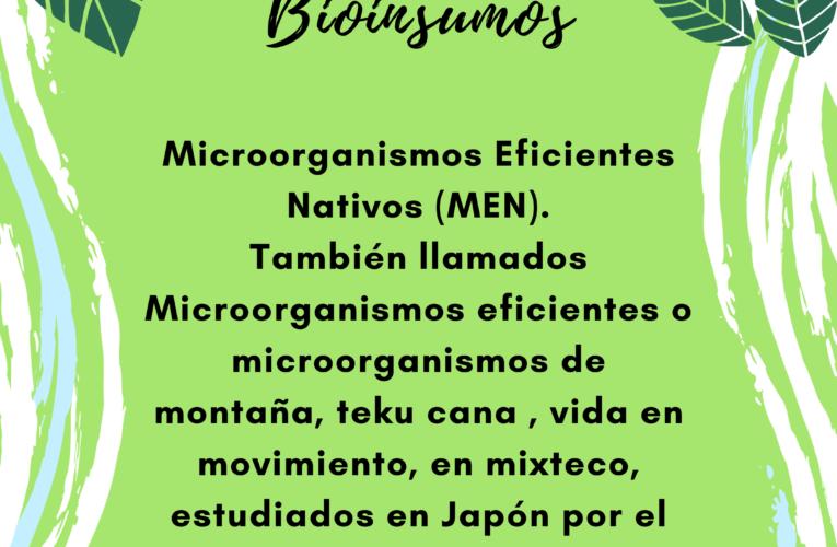 Agroecología: bioinsumos