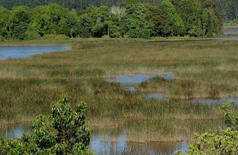 Rechazo al proyecto de ley para establecer un régimen de uso de los humedales e islas de Entre Ríos