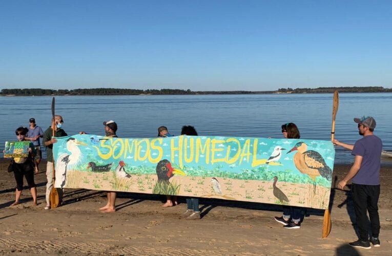Los humedales no se tocan: la agrupación Mil árboles para Concepción formó parte de la jornada en la Isla del Puerto