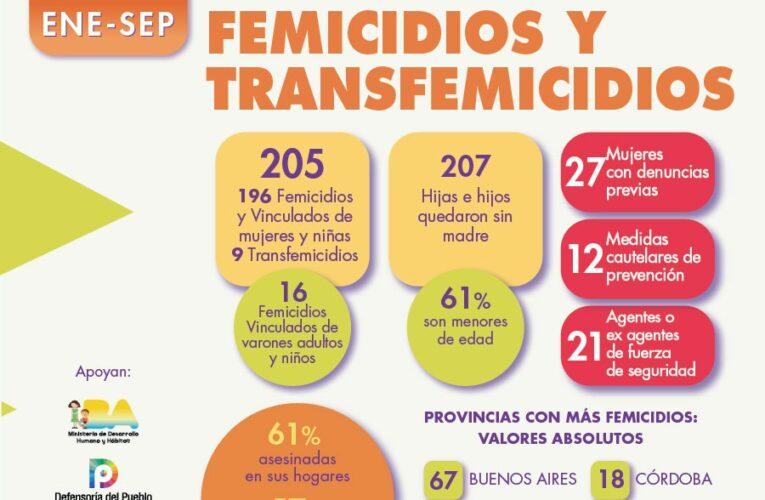 Desde enero a septiembre se cometieron 196 femicidios en Argentina